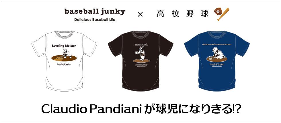 baseballjunky×高校野球バナー
